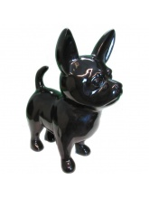 Chihuahua Taille M Noir