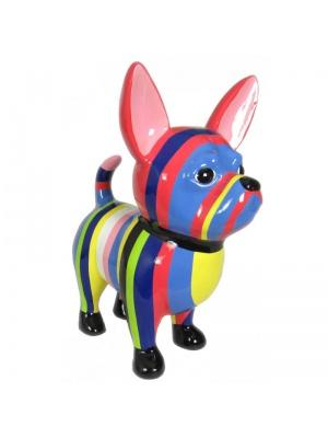 Chihuahua Taille M Multicolore