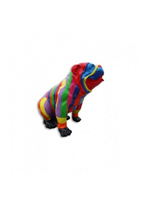 Bull dog US Assis Multicolore