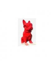 Bouledogue Cravate et Lunettes Rouge