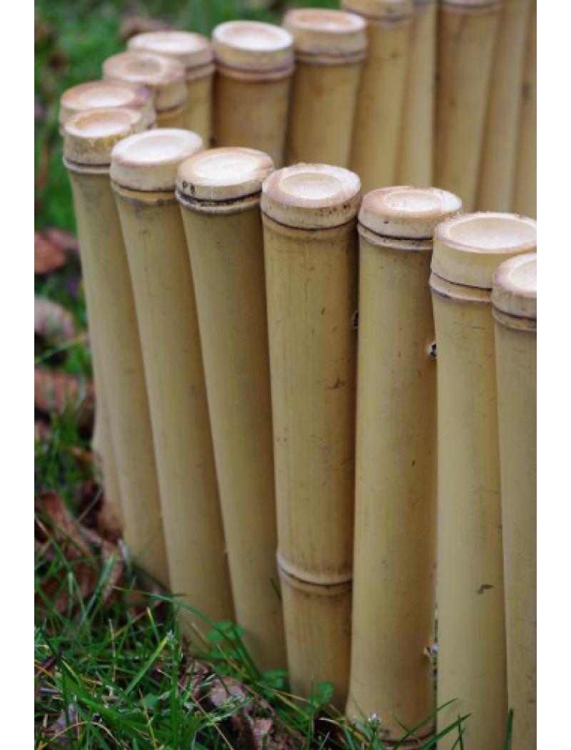 bordure tradition bambou naturel r gulier bira bambouland bordures jardin concept. Black Bedroom Furniture Sets. Home Design Ideas