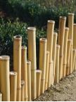 Bordure Japonaise bambou naturel irrégulier Suti