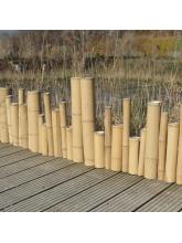 Bordure Zen bambou naturel irrégulier Xiao