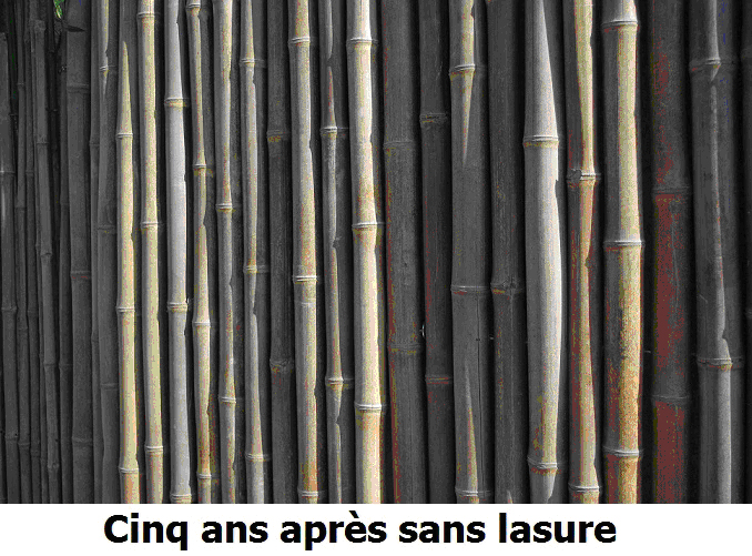 Bambou non lasuré après 5 ans