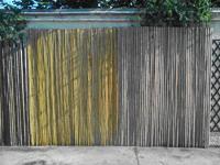 Entretien des canisses et palissades bambou