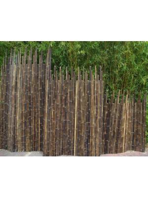 Clôture bambou japonaise noir Ø5cm
