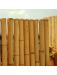 bambouland