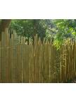 Clôture bambou japonaise Ø5cm