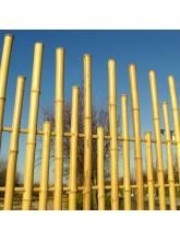 Panneau bambous espacés naturel irrégulier