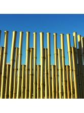 Panneau bambous pleins naturel irrégulier