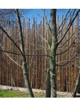 visuel Clôtures en bambou naturel