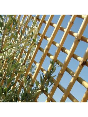 Treillis bambou naturel diamètre 2 cm