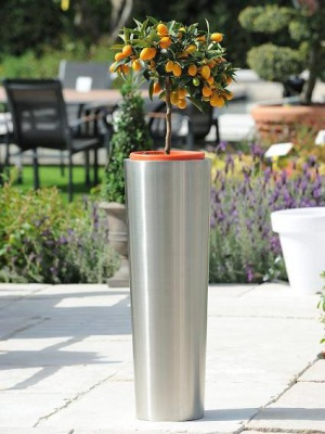 Pot de fleurs en inox Conique