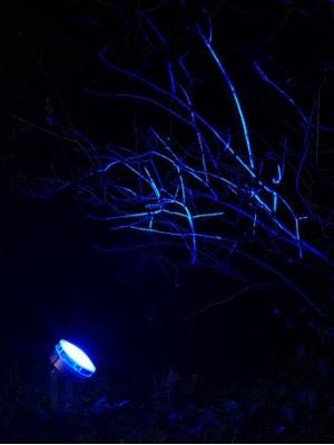 Spot étanche à LED