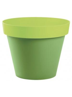 Pot Style Bicolore Bambou / Pistache