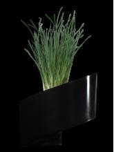 Pot de fleurs mural Noir brillant 16cm