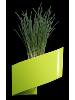 Pot de fleurs mural vert brillant 16cm