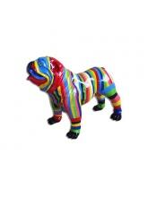 BullDog Américain M debout Multicolore