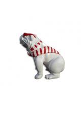 Bull Dog US Assis Cravate Marinière Rouge
