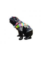 Bull Dog US Noir Assis Cravate Multicolore