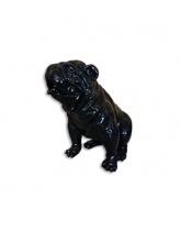 Bull dog US Assis Noir