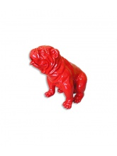 Bull dog US Assis Rouge