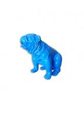 Bull dog US Assis Bleu