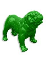 BullDog Américain L debout Vert