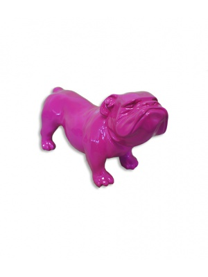 BullDog UK Rose