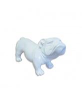 BullDog UK Blanc