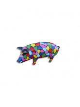 Cochon arlequin