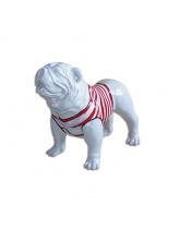 BullDog Américain M debout marinière Rouge