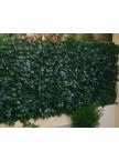 Haie artificielle feuilles de lierre DUO