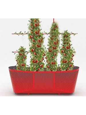 Jardinière Laorus rectangle rouge
