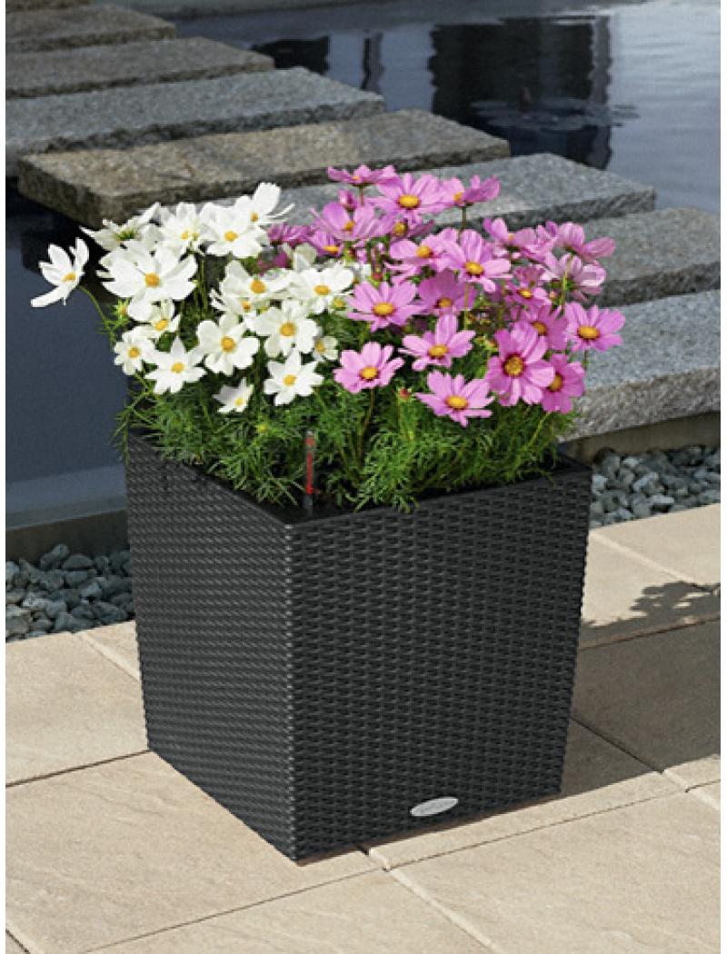 Pot de fleur Lechuza Cube Cottage Granit