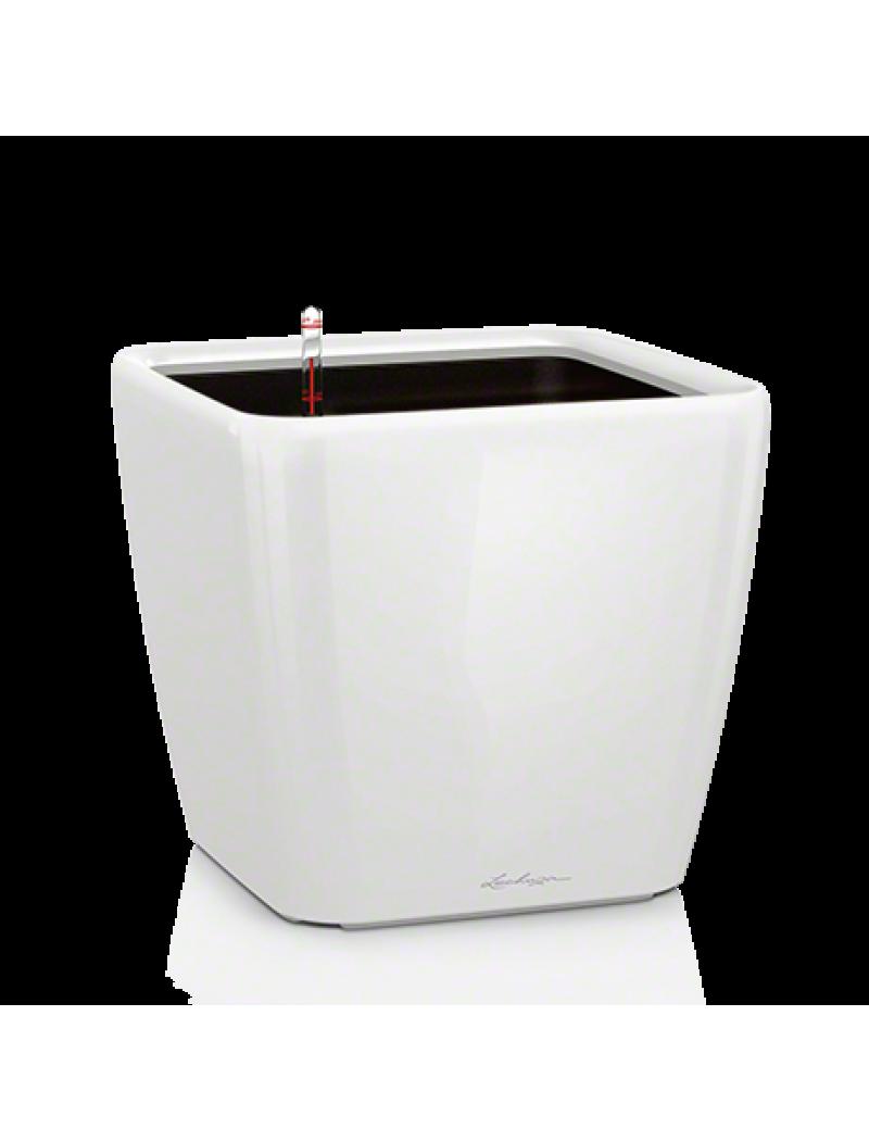 Pot QUADRO LS premium Blanc brillant kit complet Lechuza - Pot de ...