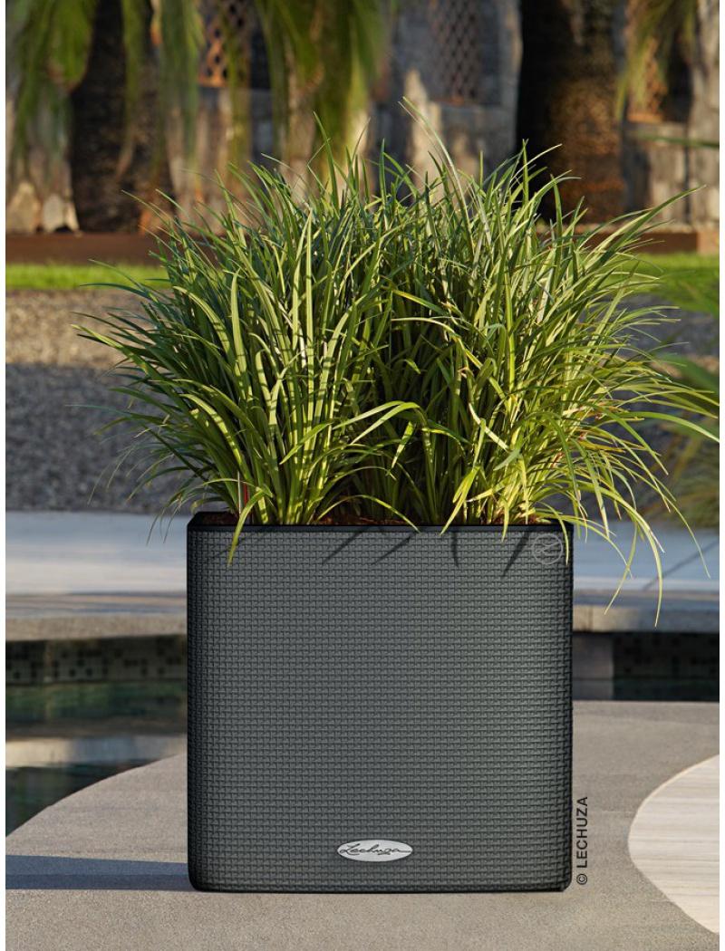 Pot cube ls color 35 gris ardoise lechuza pot de fleurs for Pot jardin gris