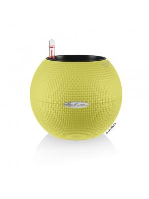 Pot Puro Color 20 vert citron kit complet