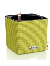 Pot Cube Color 14 Vert citron