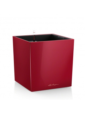 Pot Cube Premium Rouge brillant