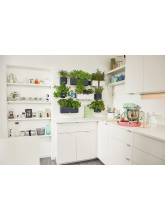 Cube Color Green Wall Home Kit Color blanc