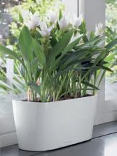Mini-jardinière Delta 20 blanc brillant
