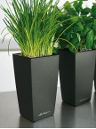 Pot Mini Cubi anthracite