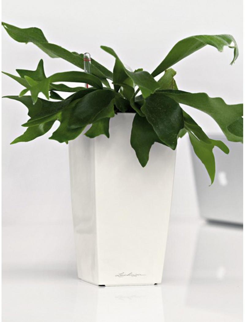 Pot Mini Cubi blanc
