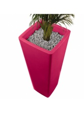 Pot All So Quiet - Fuchsia