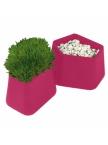 Pot Rock Garden small - Fuchsia