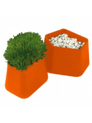 Pot Rock Garden small - Orange