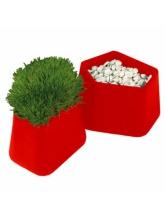 Pot Rock Garden small - Rouge