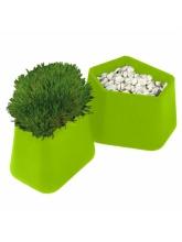 Pot Rock Garden small - Vert