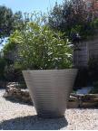 Pot Groove 700 aluminium brut